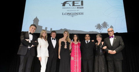 Winners of the FEI Awards 2015