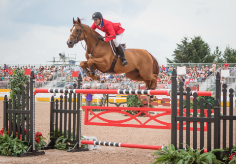 Two – time Olympic Gold medallist Mclain Ward tops Longines rankings