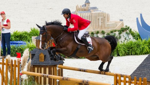 Exclusive Horse Interview with : Karim El Zoghby's Amelia